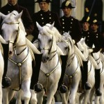 vienna_Lipizzaner-Horses-riding-school